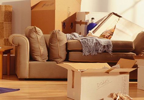 home relocation services by rapid movers